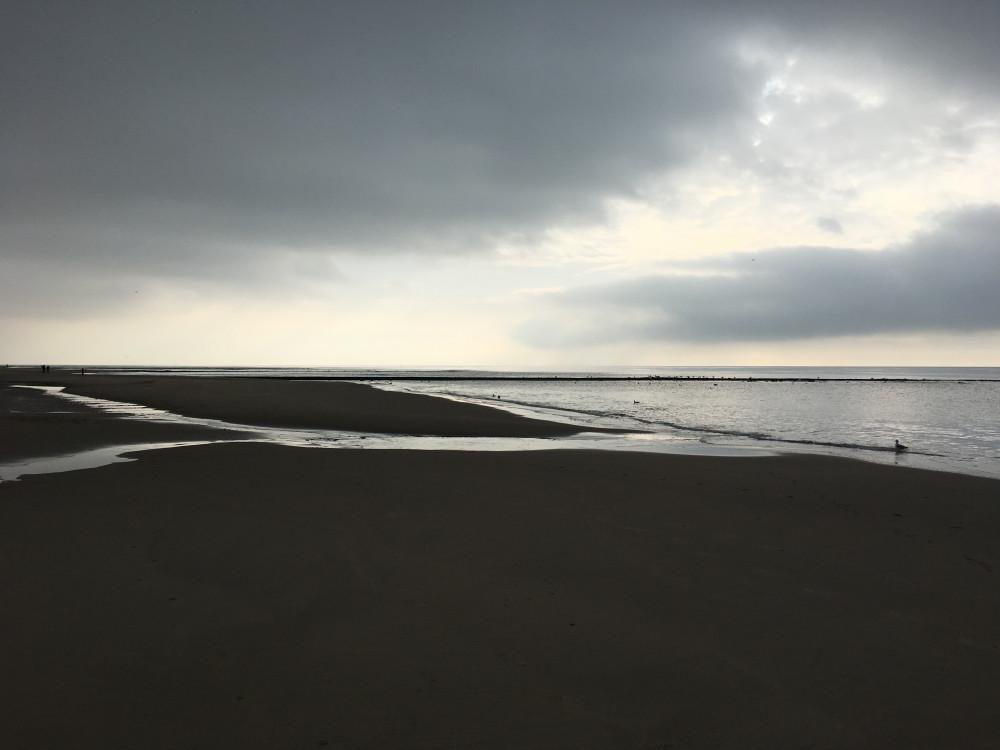 duinen3-1000x750-blur